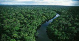 Preservação da Amazônia: entendendo a polêmica
